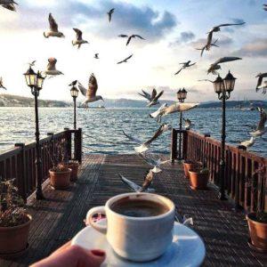 кофейные истории